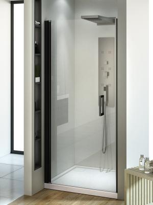 Душевая дверь NEGRA