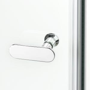 Душевая дверь NEW SOLEO